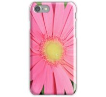Candy Pink Daisy iPhone Case/Skin