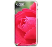 Perfect Red Rose iPhone Case/Skin