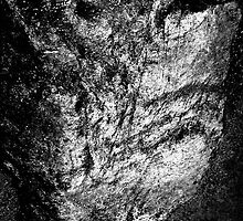The Rock Face. by Eugene Francis Cummings