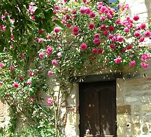 Rose Door by Gabrielle Battersby