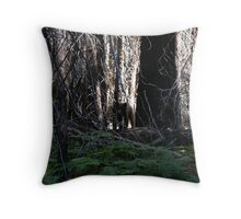 Lost Valley Bear Throw Pillow