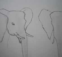 Elephant heads by Alice Oates