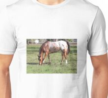 Appaloosa Horse Unisex T-Shirt