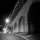 Chouteau Street by Ani Corless