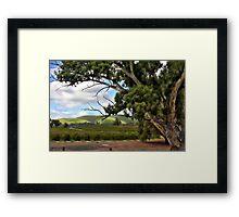 Jacobs Winery, South Australia Framed Print