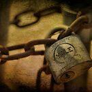 lock by A.R. Williams