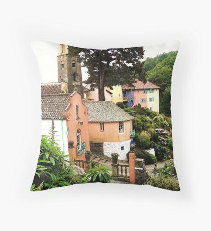 Portmeirion Painted Throw Pillow