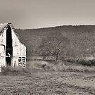 sepia barn by A.R. Williams