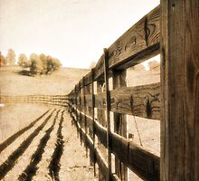 fence with texture by A.R. Williams