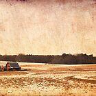 barn by A.R. Williams