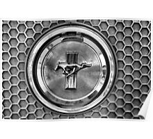 Mustang honeycomb grill Poster