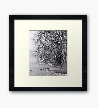 Foggy Lake Framed Print