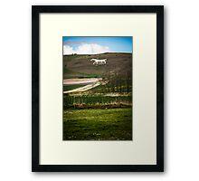White Chalk Horse on the Salisbury Plain Framed Print
