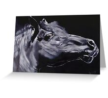 Fury - Beautiful Horse Head Greeting Card