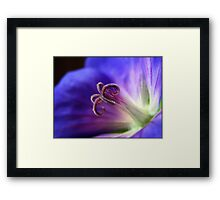 Lightness of being.... Framed Print