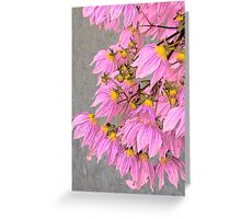 Vintage pink Greeting Card