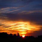 Glorious Morning by WildestArt