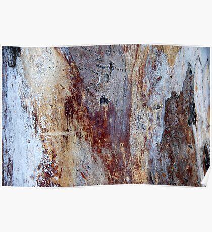 Gum Tree Bark Poster
