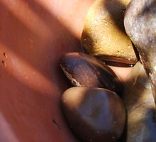Rocks in Water Pot by Lee  Travathan