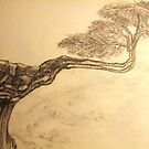 Drawing Day  Tree on the Edge 08 by coppertrees