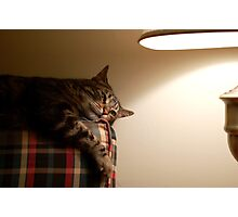 max couch light Photographic Print