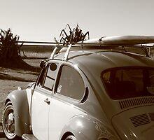 All Summer Long by Elaine Harriott