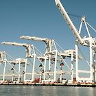 Shipping cranes at the Port of Oakland by Martha Sherman