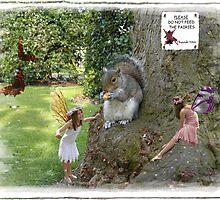 DO NOT FEED THE FAIRIES by Harri