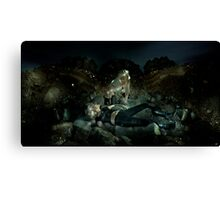 The White Devil Canvas Print