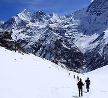 Annapurna Base Camp Trail - Nepal by aidan  moran