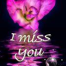 I miss you-Gladiolus by Annika Strömgren