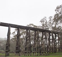 Pyalong Trestle Bridge by Kerry Duffy