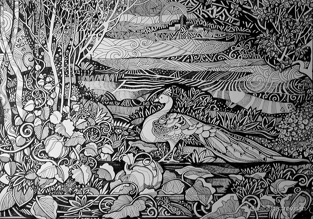 pumpkins and peacock  by elisabetta trevisan