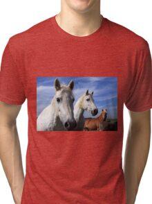 White Camargue Horses Tri-blend T-Shirt