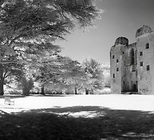 Old Wardour Castle by Mark Jones