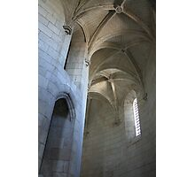 Chateau Amboise Photographic Print