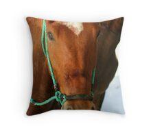 Horses at the beach Throw Pillow