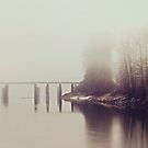 Fog on the Slough | Dewdney Bridge by Tamara Brandy