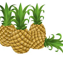 Pineapples by kwg2200