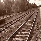 Follow the Tracks by Marmadas