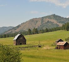 Old Farmstead in Eastern Oregon by jcimagery