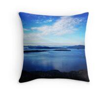 Blue Washington Throw Pillow
