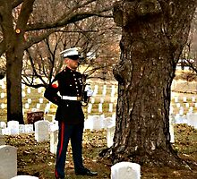 Requiem to a Fallen Hero  by Don Wright IPA