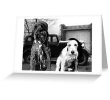 Bonnie and Clydes pups Greeting Card