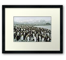 Standing Room Only Framed Print
