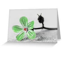 green petals ... Greeting Card