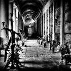Graveyard, Verona (Italy) by Traven Milovich