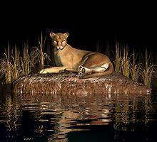 Puma by Walter Colvin