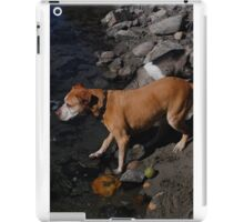 down at the river iPad Case/Skin