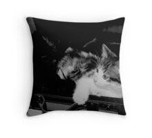 Comfortable II Throw Pillow